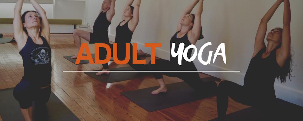 adult yoga flying yogis